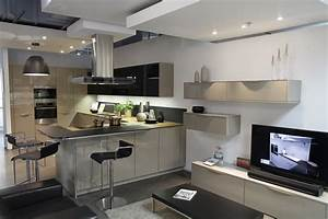 Darty Cuisine équipée : cuisine equipee pour petite cuisine 9 darty et sa ~ Premium-room.com Idées de Décoration
