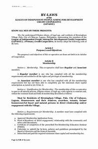modern s corporation bylaws template pictures example With s corporation bylaws template