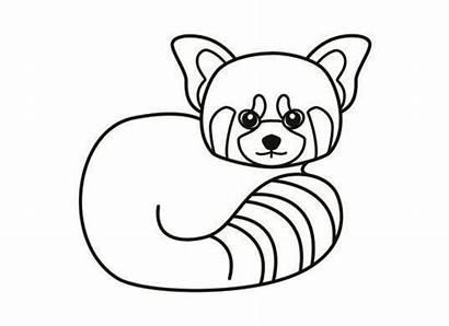 Panda Coloring Pages Drawing Pandas Clipart Cartoon