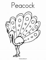 Coloring Peacock Outline Pages Drawing Template Glass Painting Printable Peacocks Feather Cute Change Getdrawings Noodle Tracing Twistynoodle Built California Usa sketch template