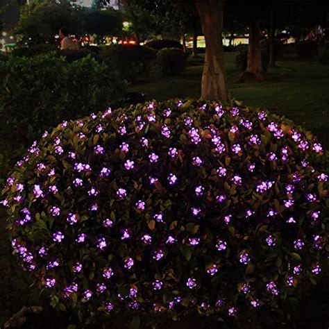 solar xmas lights for sale solar outdoor string lights 21ft 50 led purple blossom