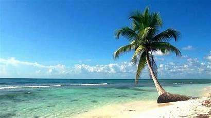 Ocean Relaxing Island Film Dreamscene