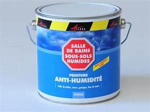 Traitement Anti Humidité : peinture anti humidit et anti moisissure arcascreen etancheite produits d tanch it ~ Dallasstarsshop.com Idées de Décoration