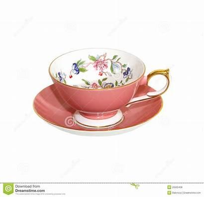 Teacup Fancy Gilded Dreamstime
