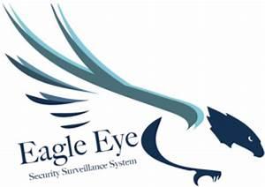 Jobs and Careers at Eagle Eye Co., Egypt | WUZZUF