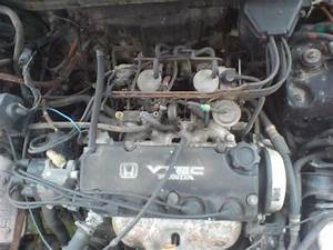 88 Crx Fuse Diagram  88  Free Engine Image For User Manual