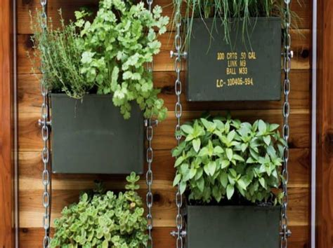 Used In Vertical Gardens by Diy Vertical Garden Ideas For Indoors And Outdoors Morflora