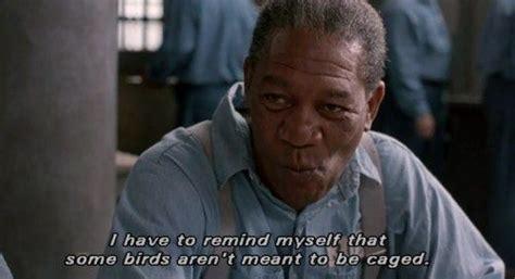 morgan freeman quotes  movies weneedfun