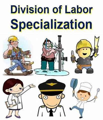 Labor Division Specialization Definition Meaning Economy Business