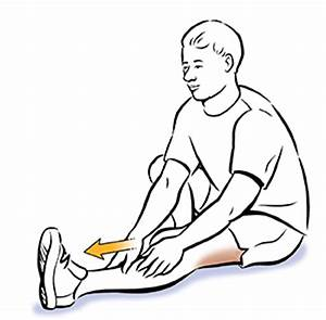 Seated Hamstring Stretch | Saint Luke's Health System