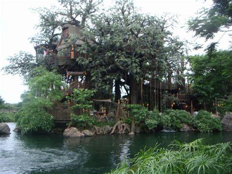 large tree houses  amazing big tree house design