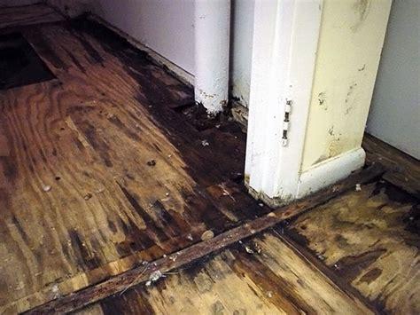 rotting basement floors basement flooring damaged  rot