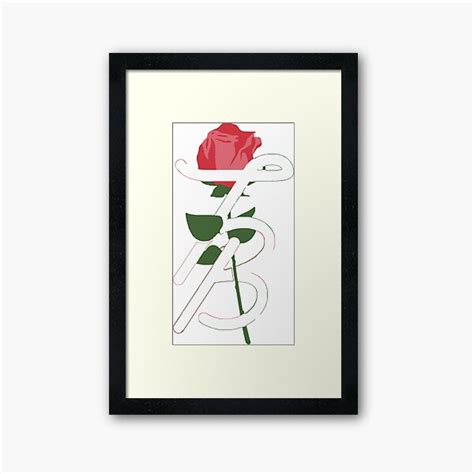 foto de Tessa Brooks Framed Prints Redbubble