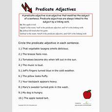 Predicate Adjectives  Worksheet Educationcom