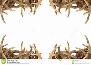 Deer Antler Border Clipart