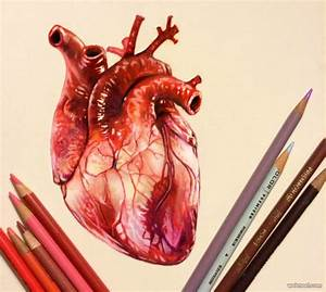 25 Stunning and Realistic Color Pencil Drawings by Morgan ...