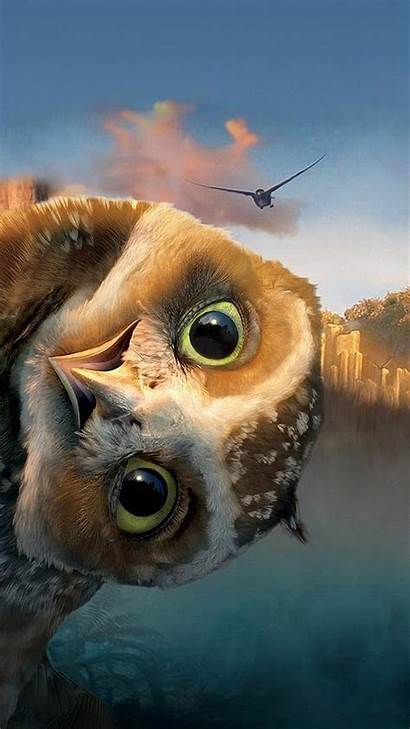 Funny Owl Htc Wallpapers