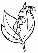 Lily Valley Coloring Pages Flowers Children sketch template