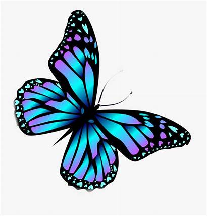 Butterfly Monarch Butterflies Wings Colorful Colourful Clipart