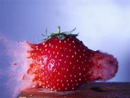 High Speed Photography Bullet