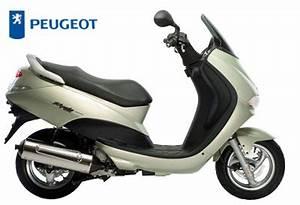 Peugeot Elyseo 50 : the peugeot 50 at the motorcycle ~ Jslefanu.com Haus und Dekorationen
