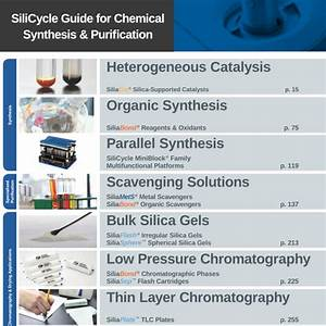 Silicycle  Guide For Chemical Synthesis And Purification