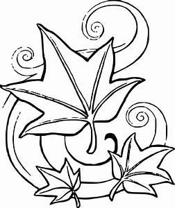 Feuilles D Automne à Imprimer : coloriage feuille d automne imprimer ~ Nature-et-papiers.com Idées de Décoration