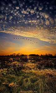 Beautiful Wisconsin Sunset