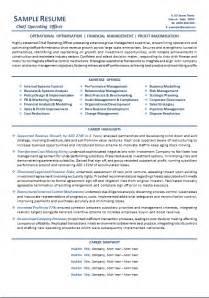 executive resume writer australia resume exle 55 cv template australia executive resume template australia academic resume