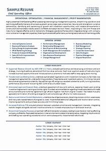 ceo resume example melbourne resumes With best ceo resume