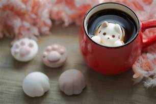 cat marshmallows marshmallow cats float and dissolve inside coffee