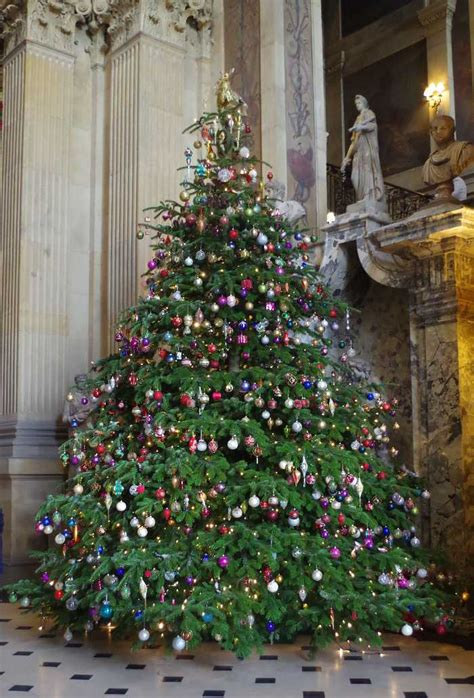 christmas at castle howard mae care