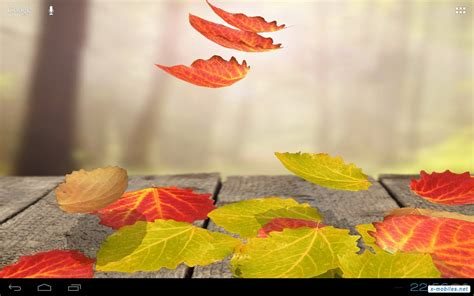 Falling Leaves Live Fall Backgrounds by Falling Leaves Live Wallpaper на андроид