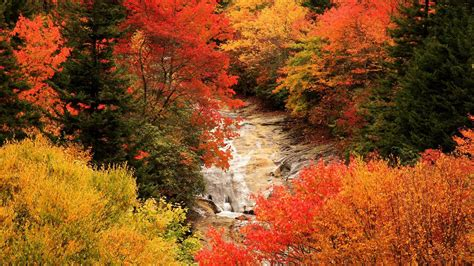 Beautiful Fall Wallpapers  Wallpaper Cave