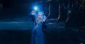 2007 07 18 Hpdumbledore