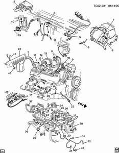 1989 Scottsdale Wiring Harness Diagram