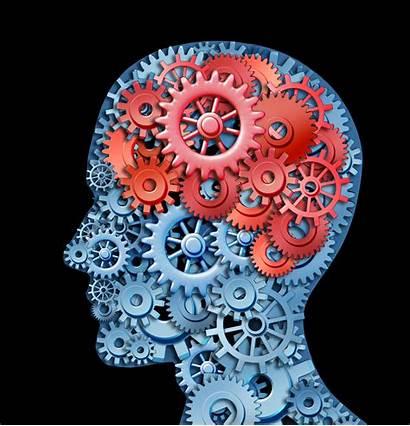 Brain Mental Illness Scans Ford Health Gears