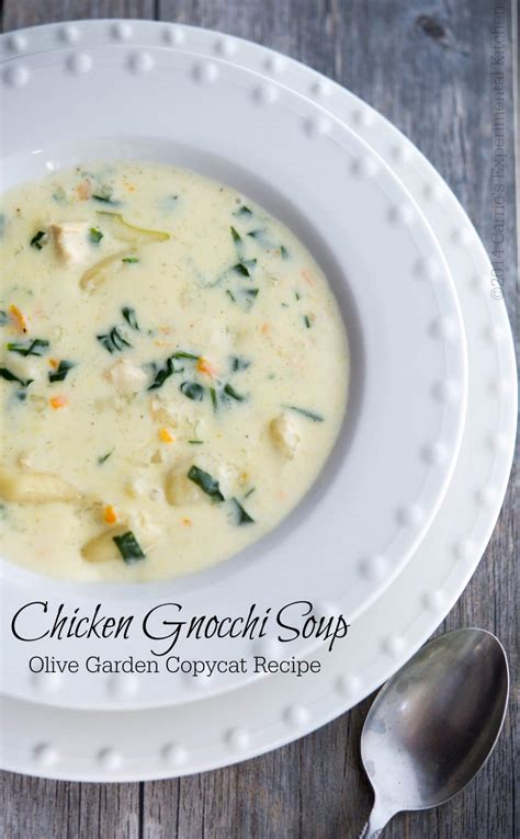 olive garden soup recipe olive garden chicken gnocchi soup copycat carrie s