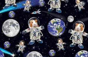 Top 10 Famous Animal Astronauts Traveled Space | Grab List