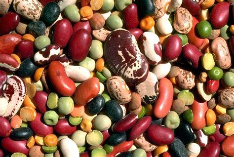 i 10 alimenti più ricchi di ferro i 16 alimenti pi 249 ricchi di ferro tanta salute