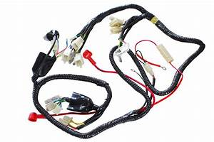 Scooter Wire Harness