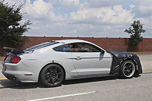 Ford Mustang Shelby Occasion : could this car be the 2018 ford mustang shelby gt500 or the rumored mach 1 autoevolution ~ Gottalentnigeria.com Avis de Voitures