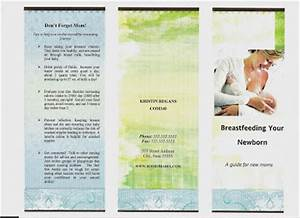 bloom loft sample brochure With breastfeeding brochure templates