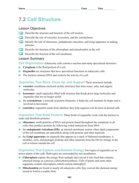 section 7 2 eukaryotic cell structure 7 2 cell structure worksheet answers breadandhearth