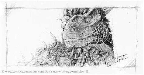 dragons  madizzlee  deviantart