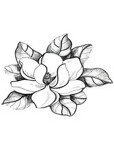 carnation bouquet magnolia coloring pages and print magnolia