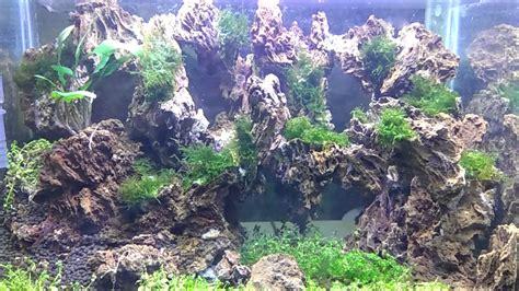 Aquascaping Stones - aquascape garang