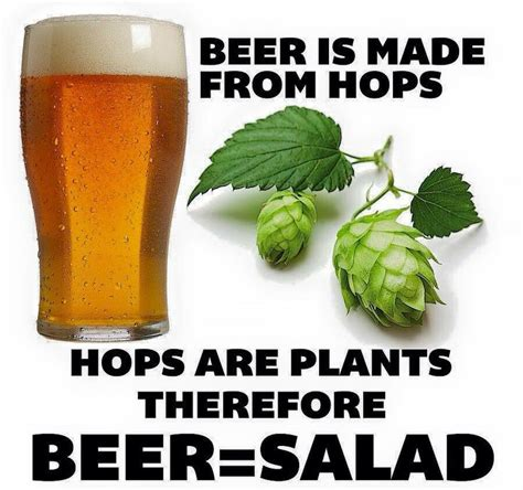 Beer O Clock Meme - 341 best it s 5 o clock somewhere images on pinterest wine funnies wine time and wine sayings