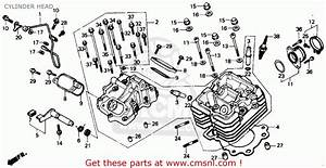 Honda Trx300 Fourtrax 300 1988  J  Usa Cylinder Head