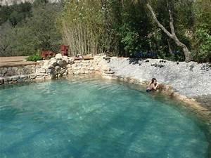 construire une piscine naturelle biologique conseils With combien coute une piscine naturelle